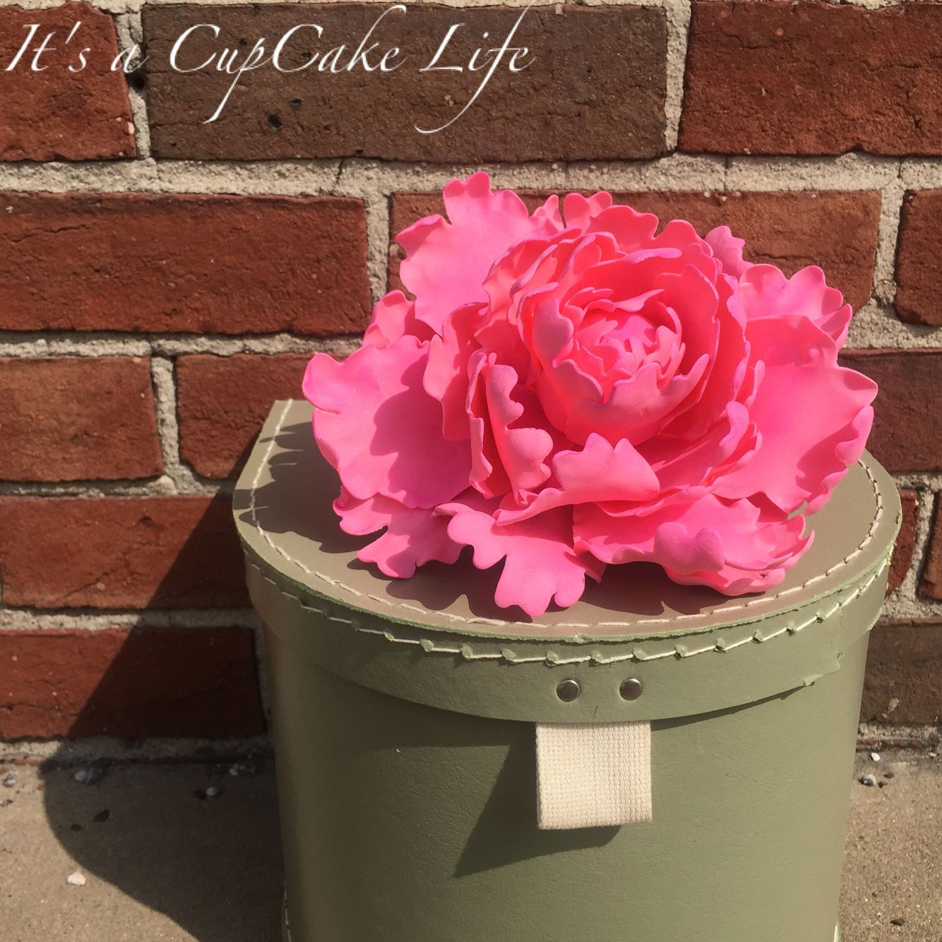 Oooh Sooo Pretty... Just love making sugar peonies! How about that pink?