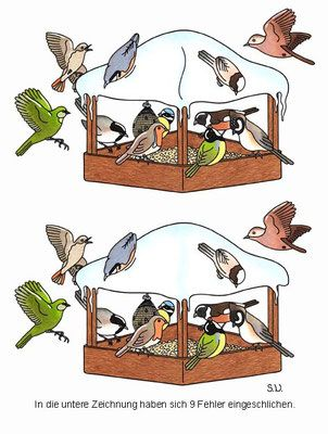 Fehlersuchbild Vögel an einem Futterhaus Bilderrätsel