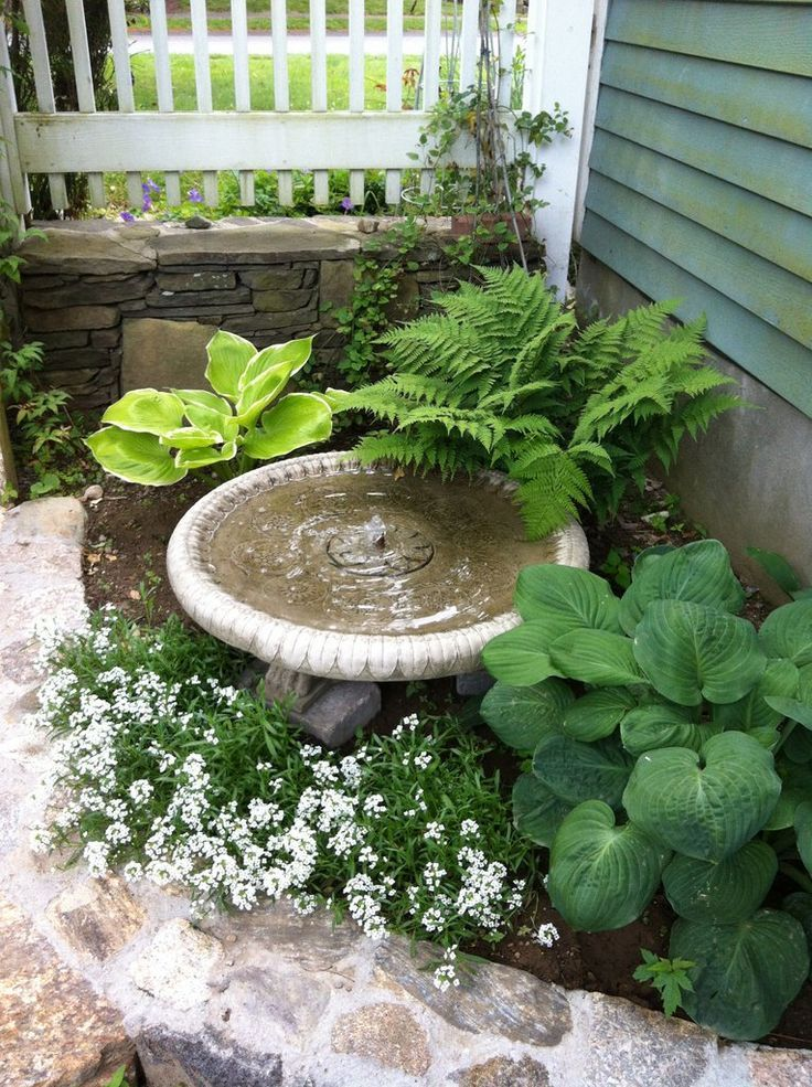 Image result for tropical courtyard at front door for Small bathroom entry door ideas