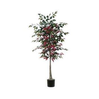 #Christmas Additional Info Vickerman Christmas Trees TEC0360-07 Nisswa Berry Capensia Tree in Pot, 6-Feet, Green/Red for Christmas Gifts Idea Promotions . Whenever purchasing a new Christmas  treats, regardless of whether or not it's regarding the puppy — often there is which buddy, colliege as well as loved one. Yet possibly at which, acquiring great...