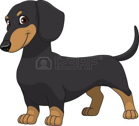 2 992 Dachshund Stock Illustrations Cliparts And Royalty Free