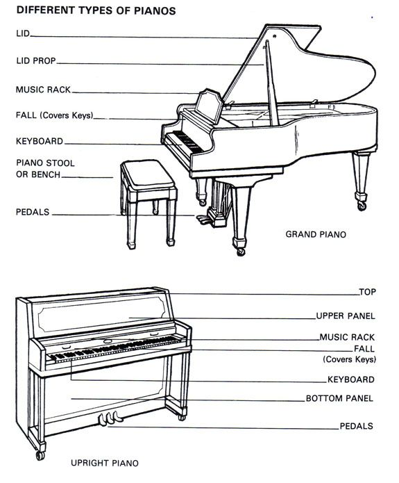 keyboard the keyboard is what makes a piano a piano on an acoustic rh pinterest com Diagram of an Unlabelled Piano Keyboard Notes On Piano Keyboard Diagram
