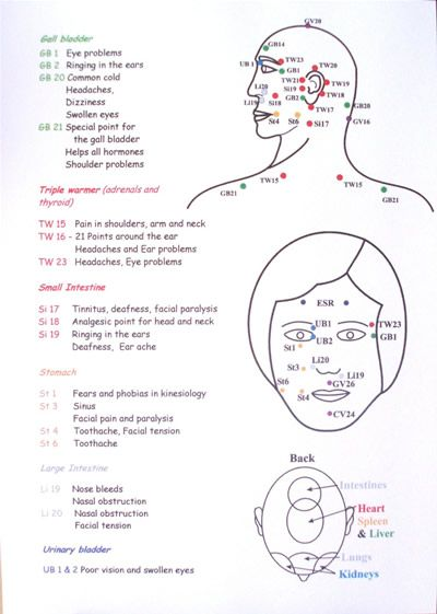 Den indiske hovedmassage kort viser skematisk Forskellige diagrammer-3819