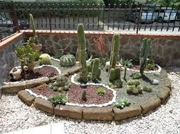Aiuole Con Sassi Cerca Con Google Jardim Cactos Cercas