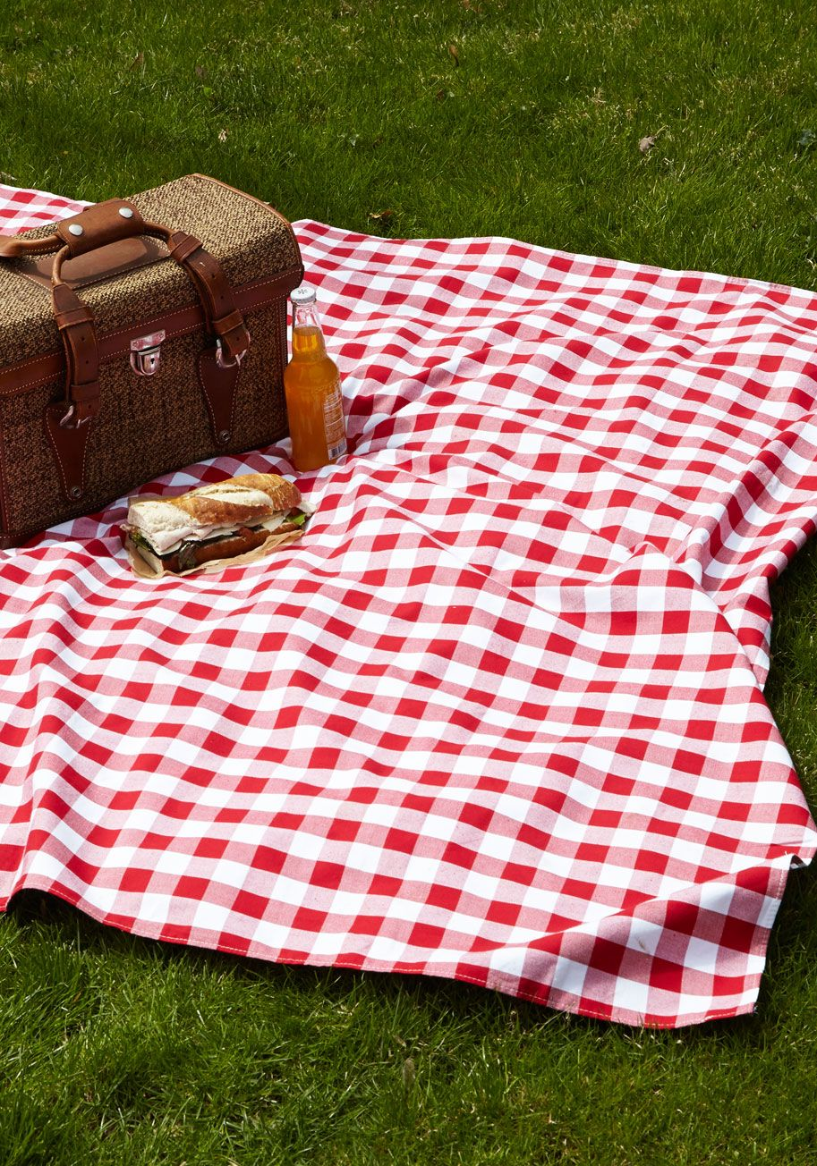 Fits Of Bliss Short Sleeve Dress Gingham Red Picnic