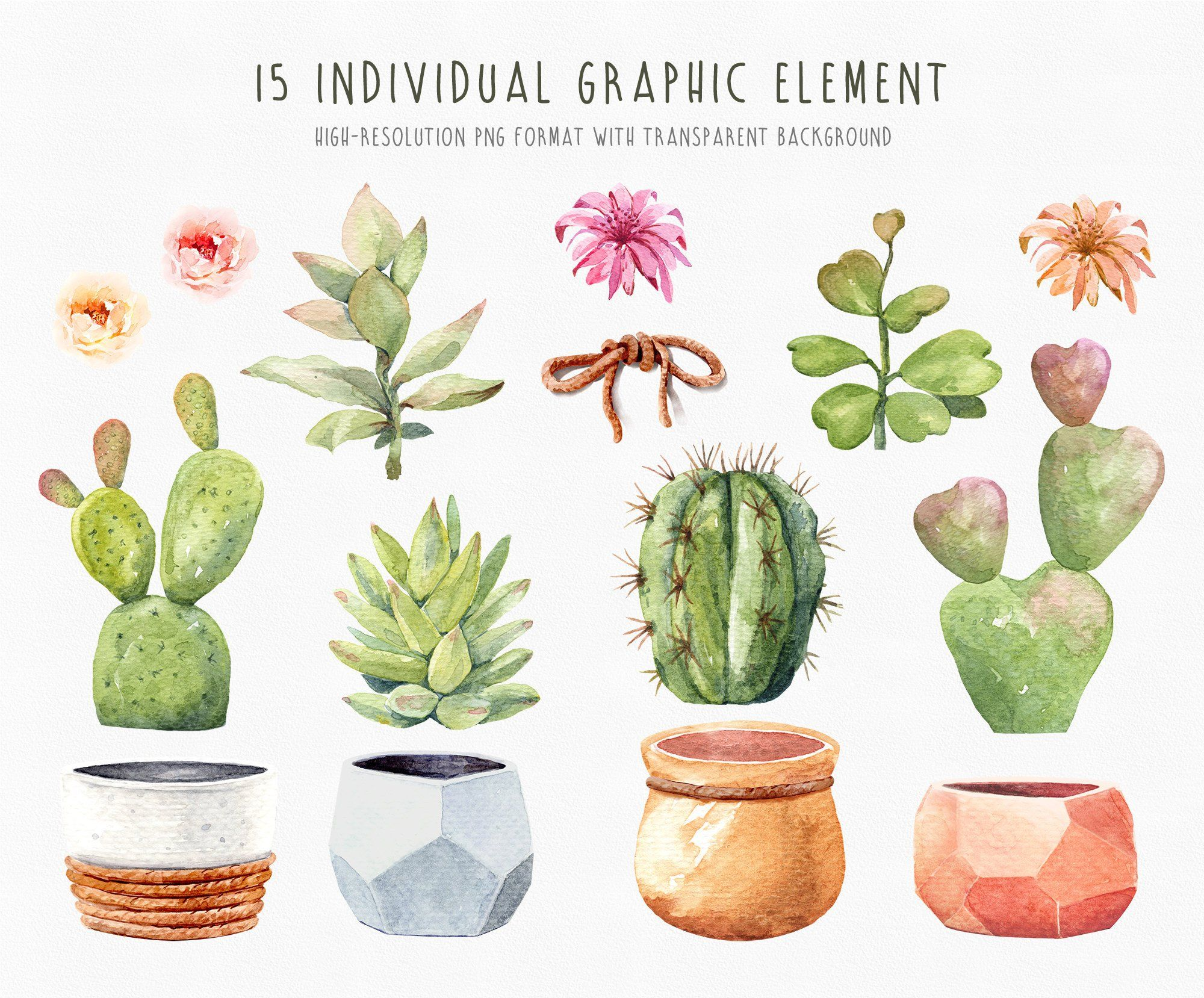 Watercolor Cactus Clipart Cacti Succulents With Pots Handmade