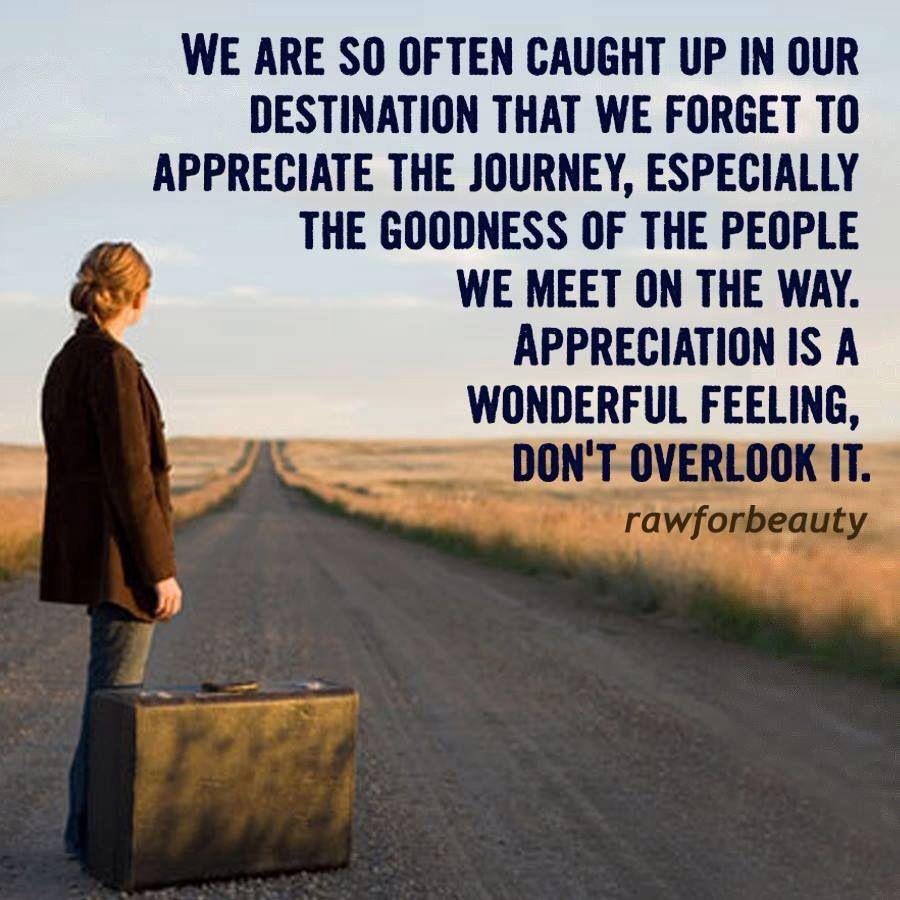 Appreciation Quotes: Appreciation Quote