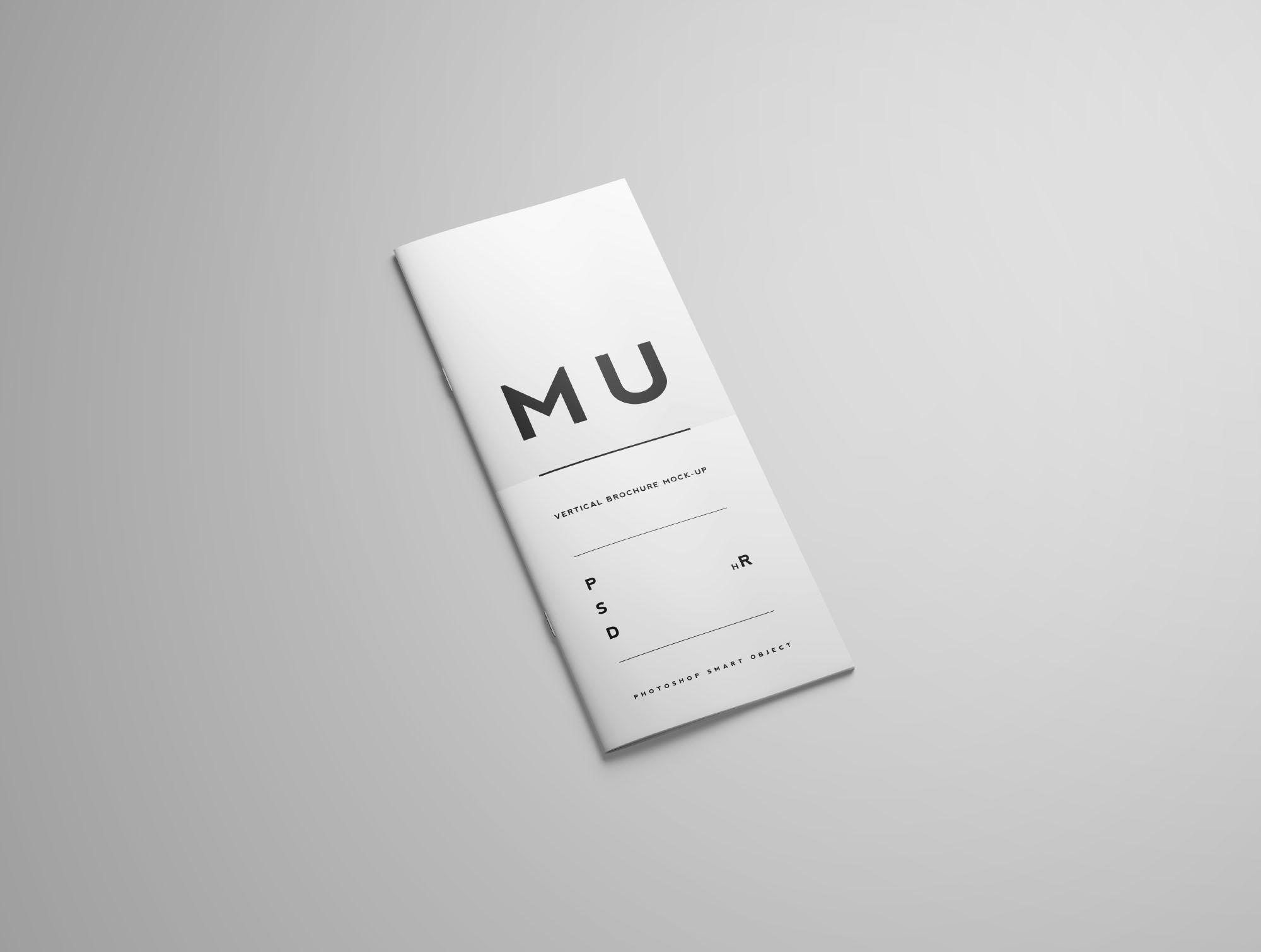 Vertical Brochure Mockup In 2021 Mockup Free Psd Mockup Brochure