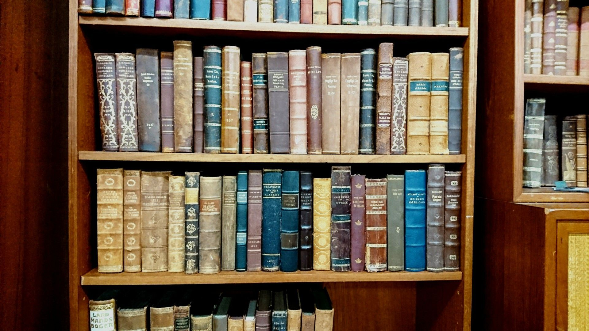 Old Book #Denmark #Oldbook #Antique #Vintage #Antiueshop #Vintageshop