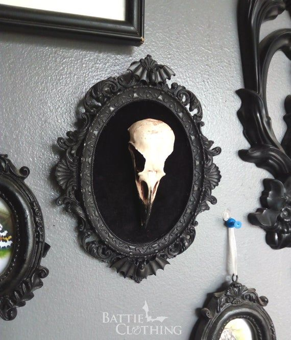 Photo of Framed Crow Skull, gothic home decor wall hanging, Halloween decoration, bird skull resin replica, Black Victorian macabre bat frame by PeculiarByNature