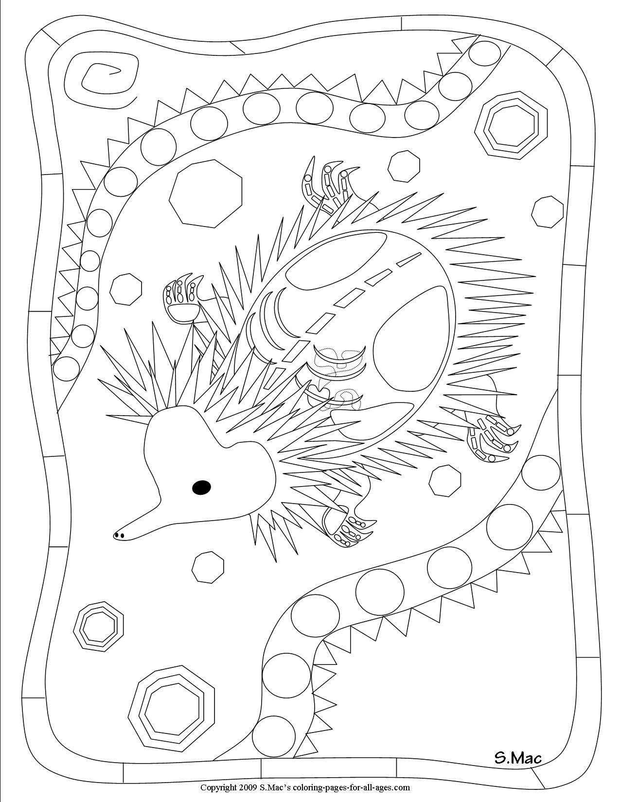 s mac 39 s echidna x ray art coloring page australie squelette art art coloring pages art. Black Bedroom Furniture Sets. Home Design Ideas