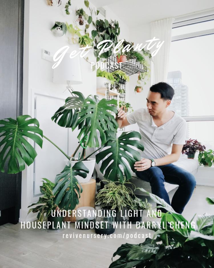 36++ Plant person info