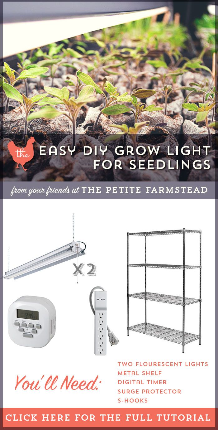 how to make a grow light for seedlings