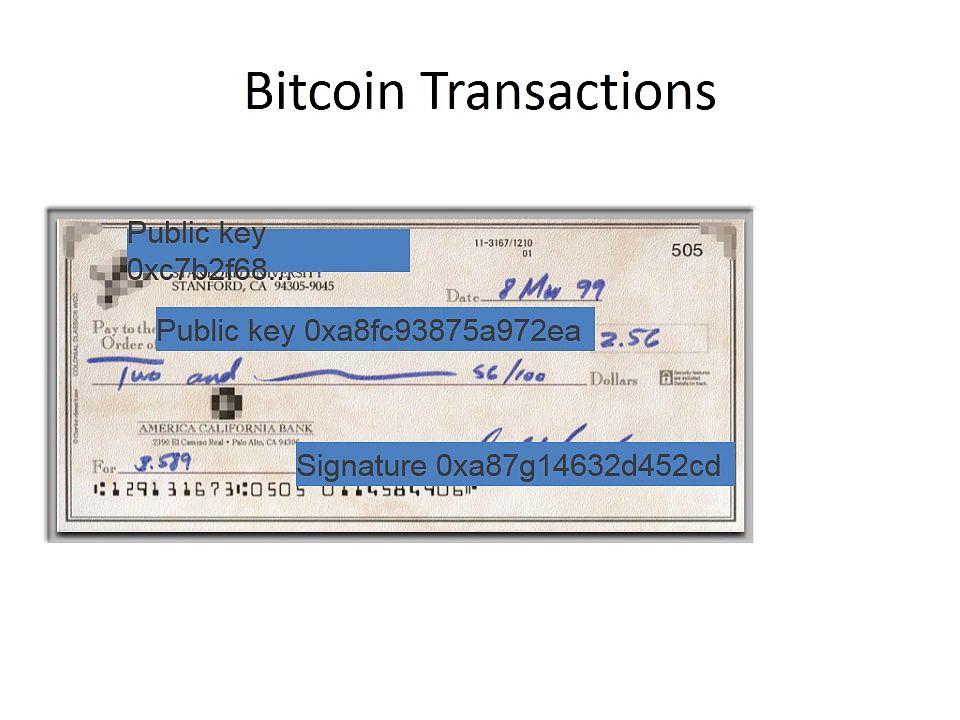 foro crypto trader