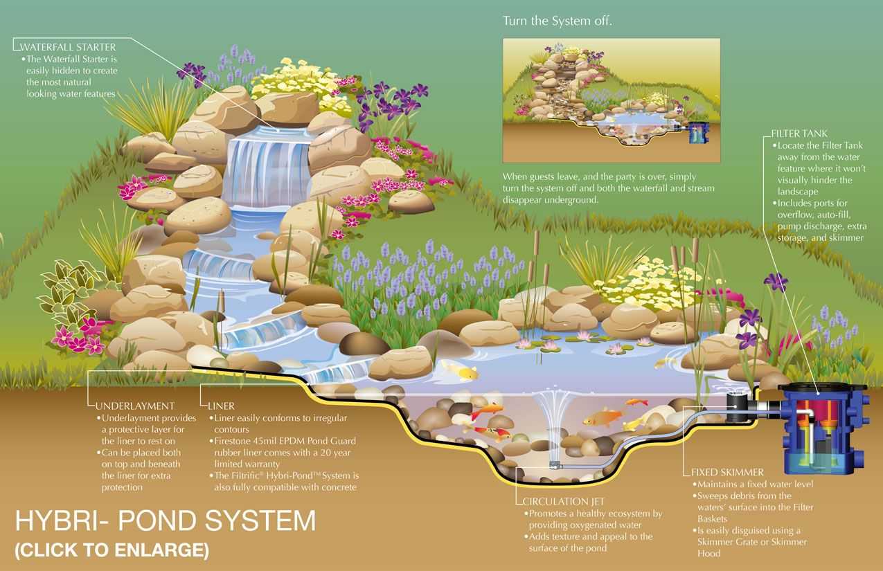 Pond design with on demand waterfall and stream nice for Garden pond building instructions