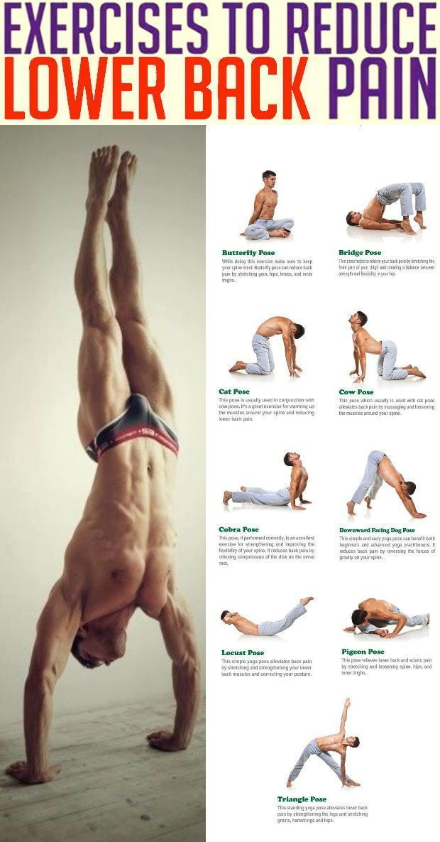 8 Stretch Exercises to Relieve Lower Back Pain - GymGuider.com