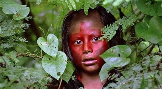 United Nations Stop the genocide of the Ancient tribes of Guarani - importance of petition