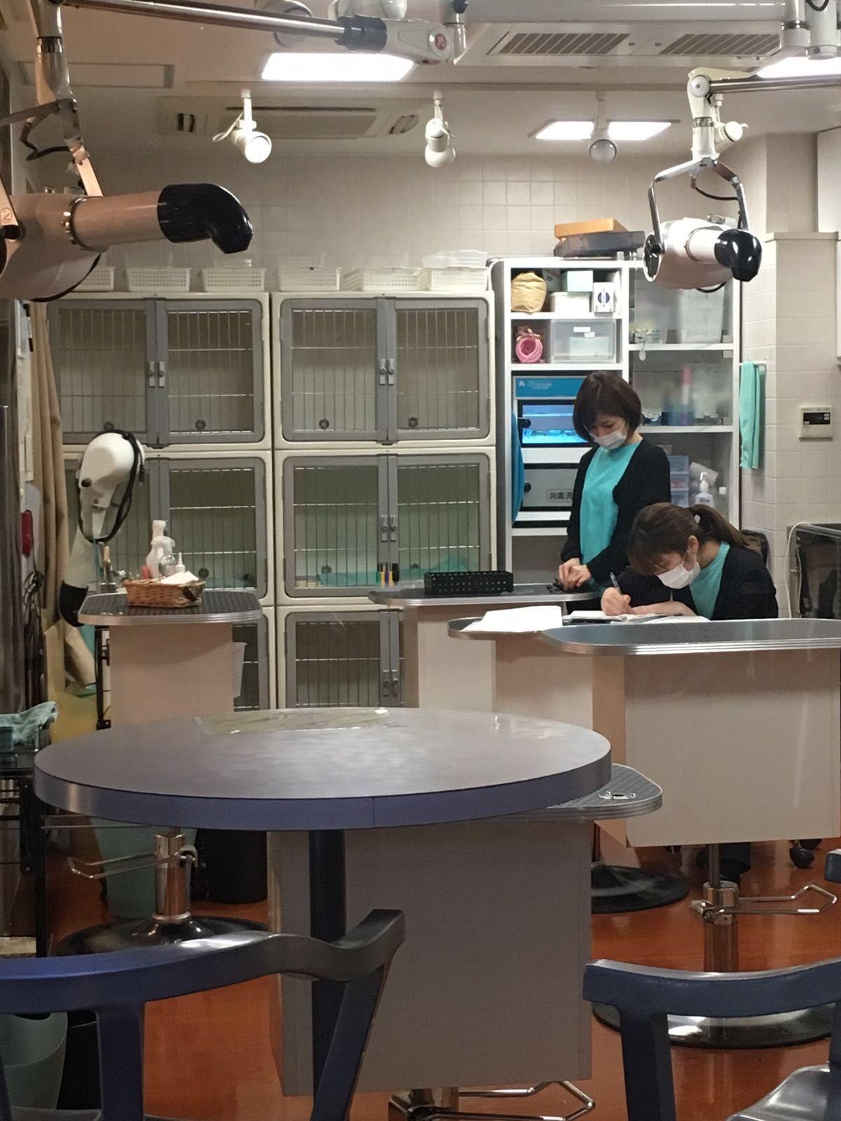 Grooming Salon In Tokyo Business Decor Grooming Salon Home Decor