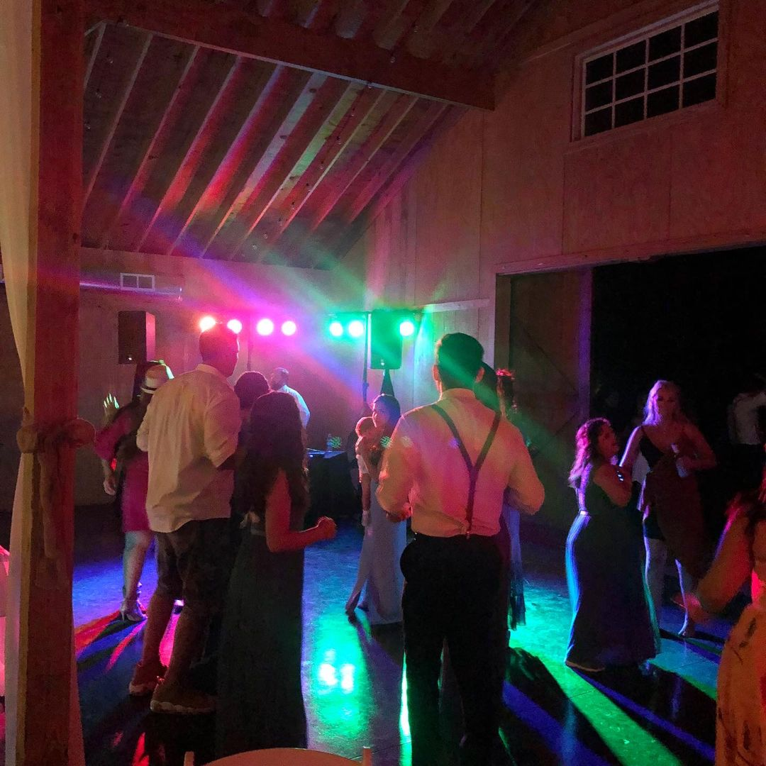 The Fun Wedding Djs Party Time Productions In 2020 Local Wedding Wedding Dj Fun Wedding