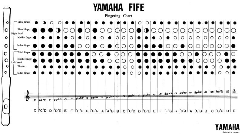 Chromatic Fife C Recorder + Fingering Chart + Carry Bag | Flauta