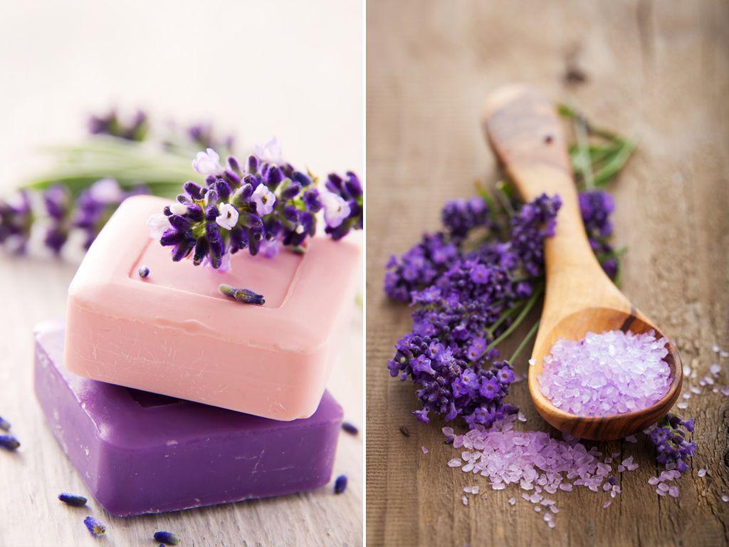 Lavendel kreativ   Farbe: * Lavendel *   Lavendel ...