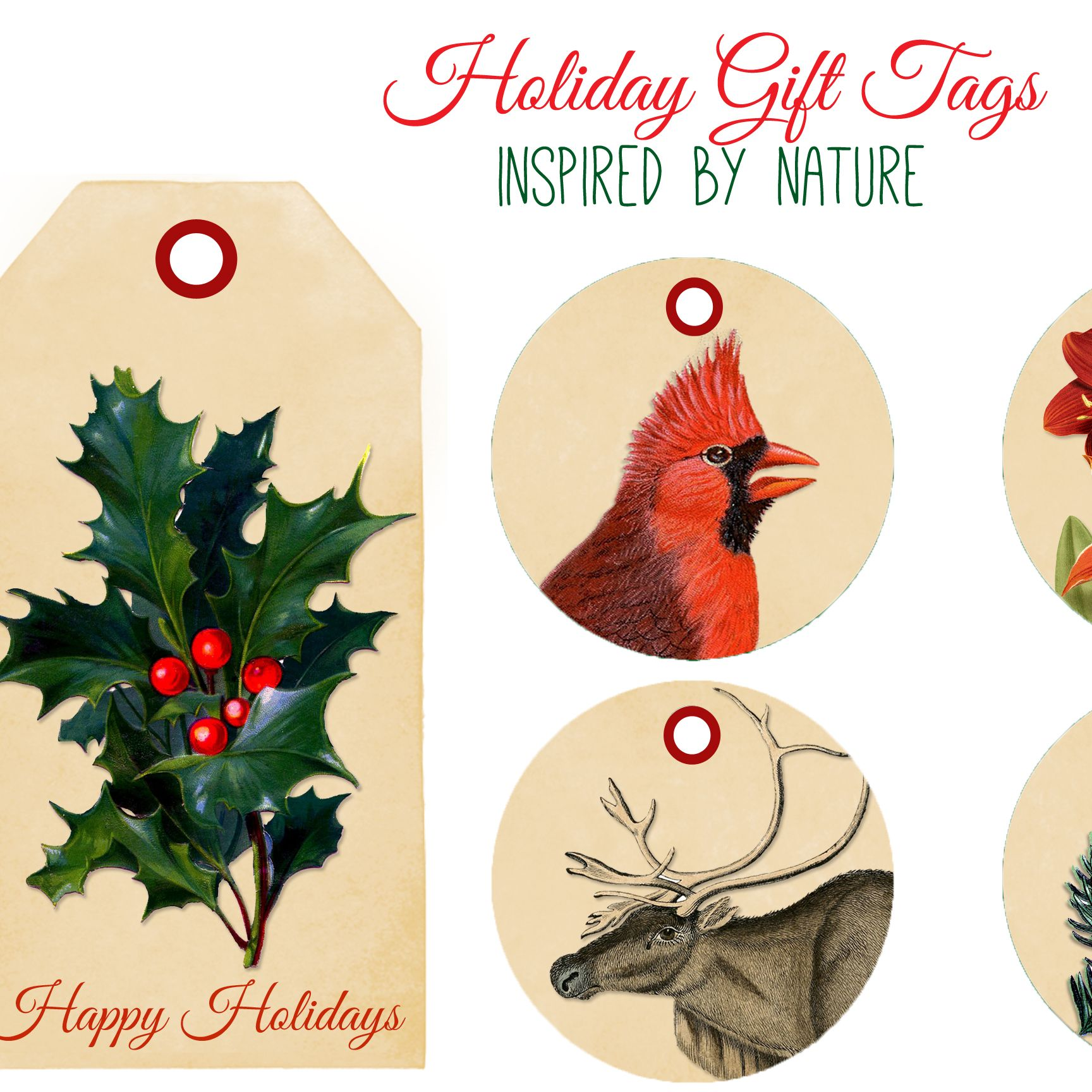 Free Printable Tags for Christmas  |   The Graphics Fairy