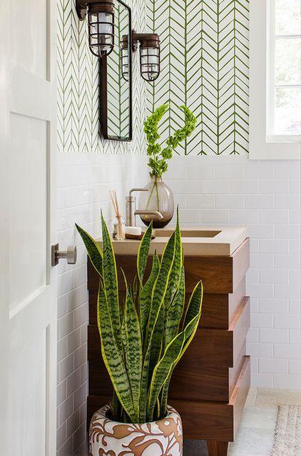 sansevieria plante adapt e pour votre salle de bain. Black Bedroom Furniture Sets. Home Design Ideas
