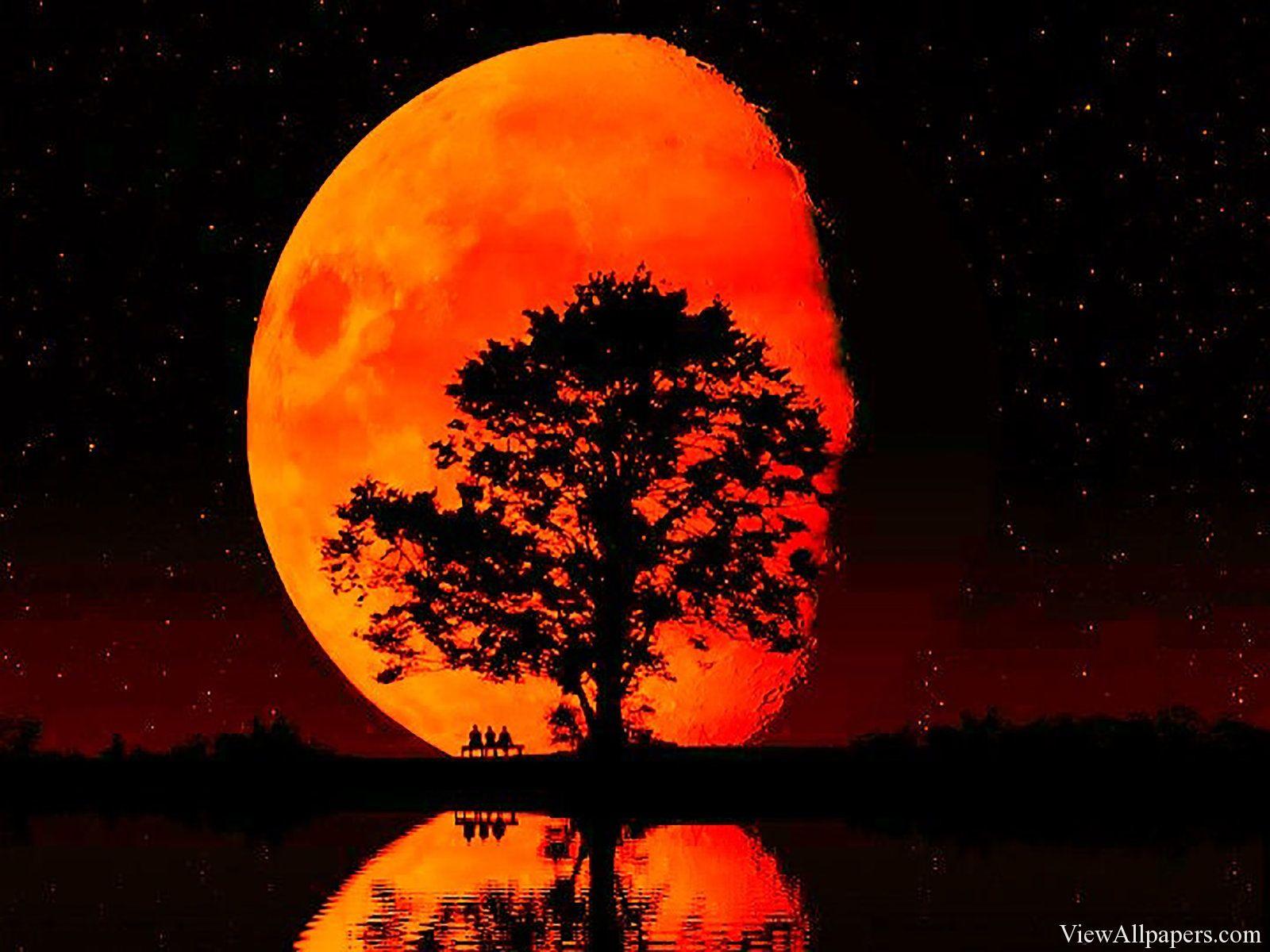 Blood Moon (Lunar Eclipse) Stock Footage Video 6356978 | Shutterstock