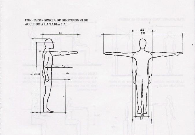 Arquitectura: Antropometria 01