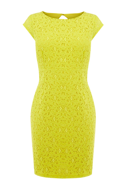 Lemon lace things i like pinterest bodycon dress warehouse