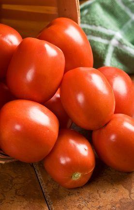 The Best Tomato Varieties