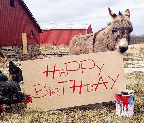 Happy Birthday From The Farm