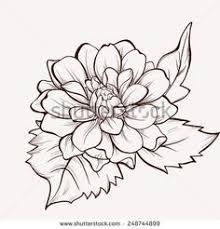 Resultado De Imagen Para Dibujos De Flores Flor Cempasuchil Dibujos De Flores Dibujo De Flor