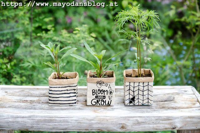 Photo of Mayodans blogg: Upcycling-idé – sommerblomstsåing i en tetra-pakke
