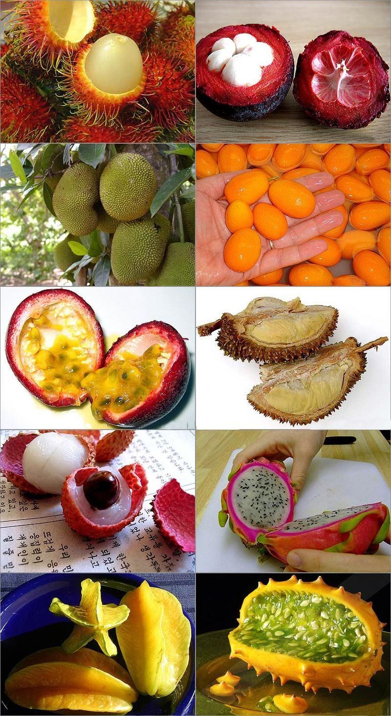 Jack Fruit Dessert Recipes