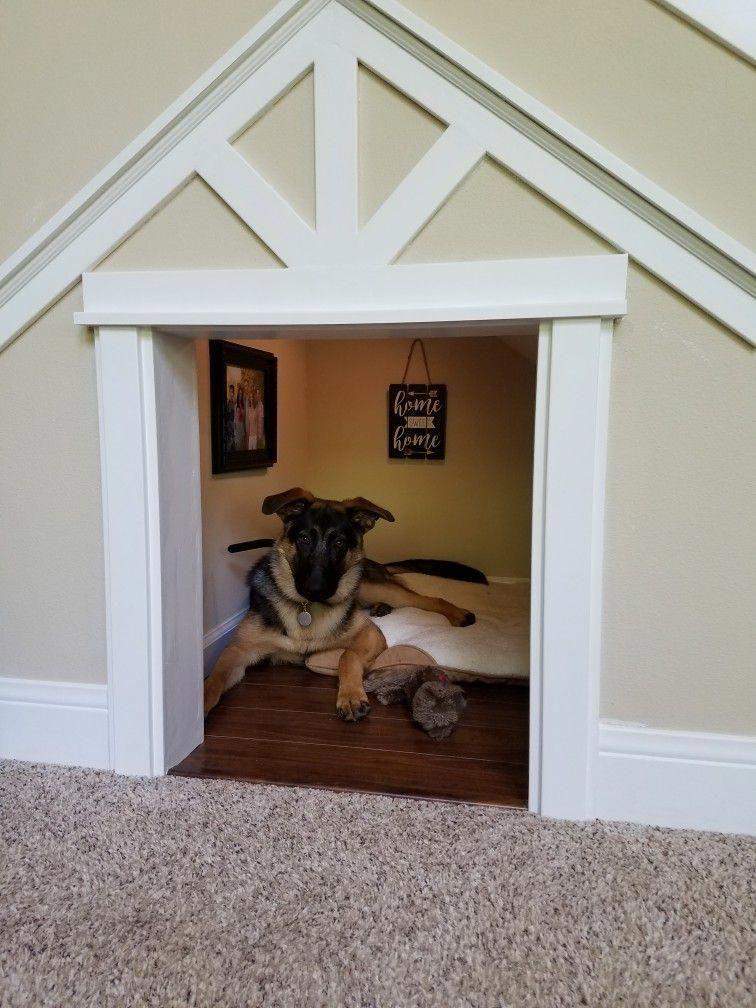 Dog Room Under The Stairs Diy Dogroomunderthestairsdiy Indoor