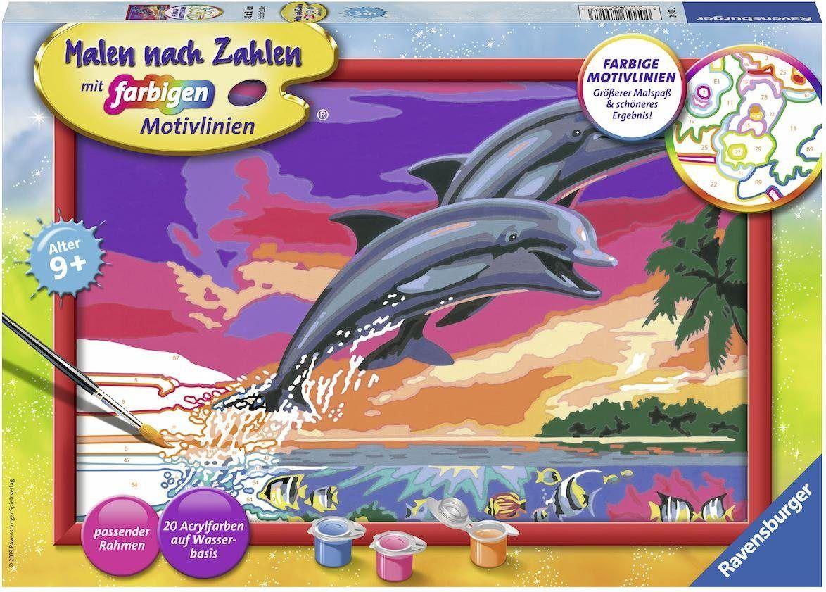 Malen Nach Zahlen Welt Der Delfine Malen Nach Zahlen Malen Und Bunt