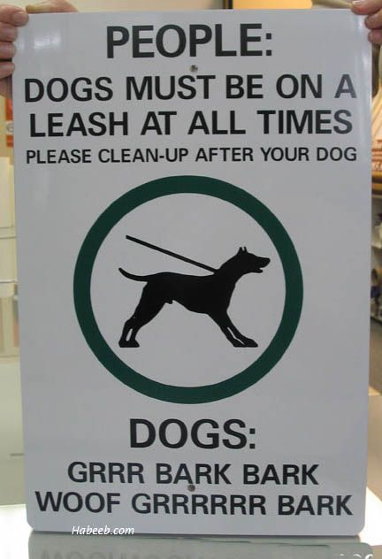I M All For Bi Lingual Signage Funny Dog Signs Funny Signs