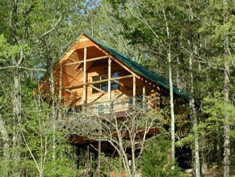 River Of Life Farm Tree House Lodge   The Log Cabin Lookout On The North  Fork
