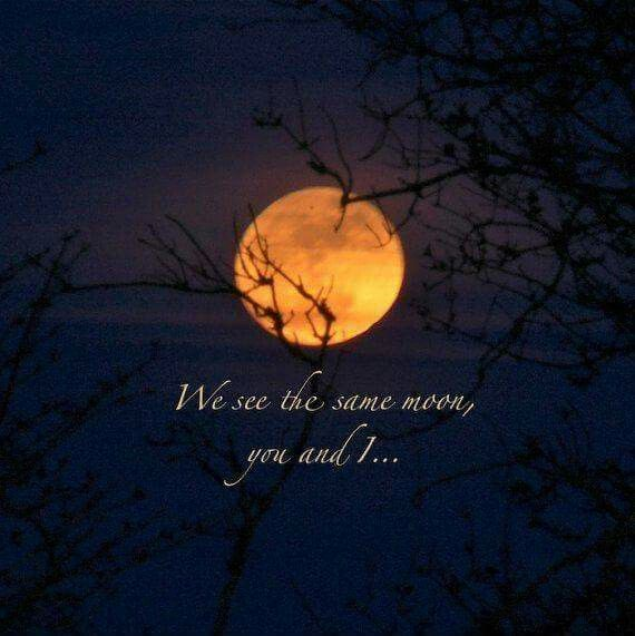 Pin By Linda Morgan On Love Quotes Poetry Full Moon Quotes Moon Quotes Moon Quote