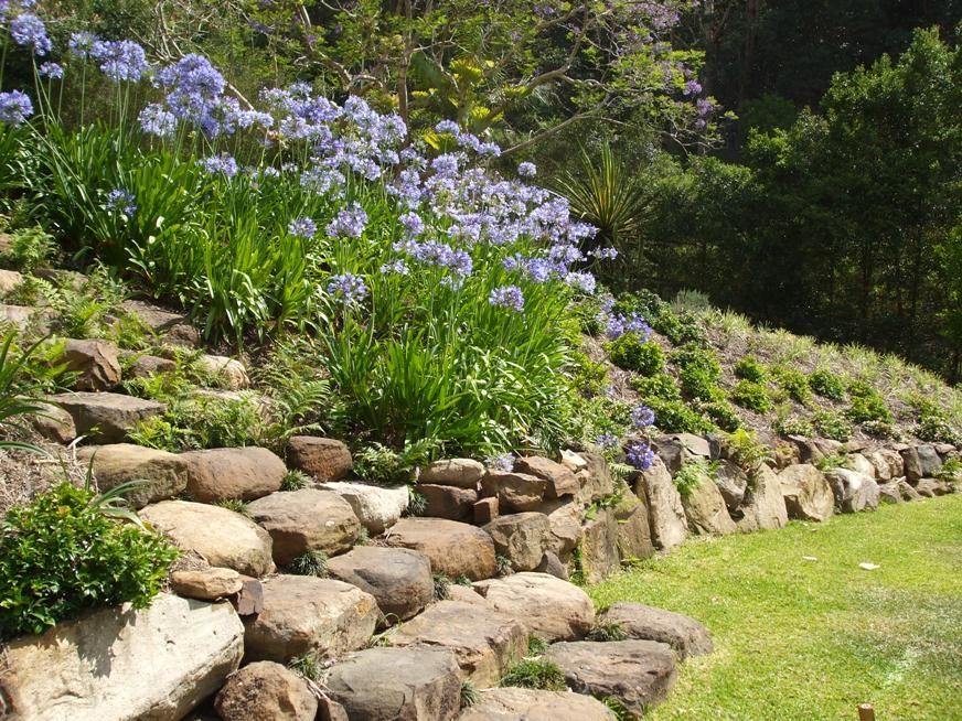 25 Rock Garden Designs Landscaping Ideas for Front Yard | Rock ...