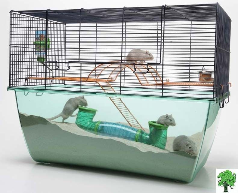 Awesome gerbil enclosure! Gerbil cages, Cool hamster