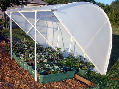 Deluxe Solexx Cold Frame Greenhouse | Garden ideas | Pinterest ...