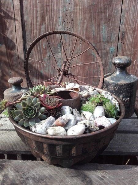 Photo of Baking dish Gugelhupf planted succulent house root rust patina old vintage brocante shabby country house garden decoration