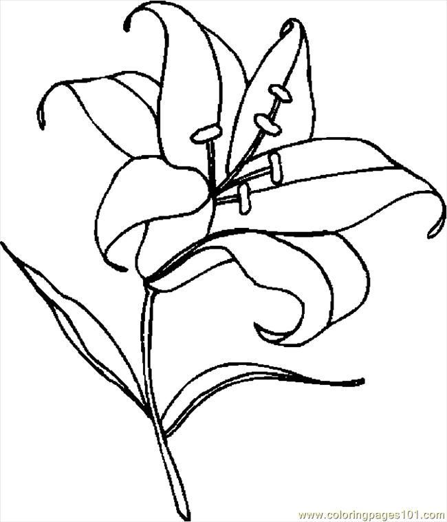 Easter Lily Coloring Pages Use Crayola Crayons Colored Pencils Or Markers To Color The Easter Lilies Description Fro Sketches Easter Lily Easter Cartoons