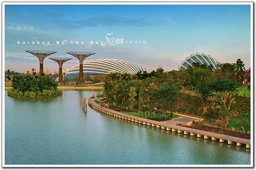 073a0d3afe7eb9811f8a5325efa140ab - Gardens By The Bay East Singapore