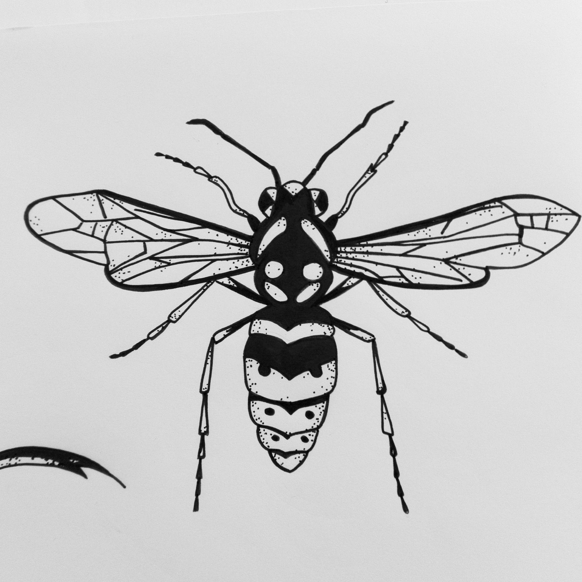 Dispo Pour Tattoo Spirartgraphique Artnblinetattoo Plaisancedutouch Flashtattoo Wasp Wasp Tattoo Drawings Wasp