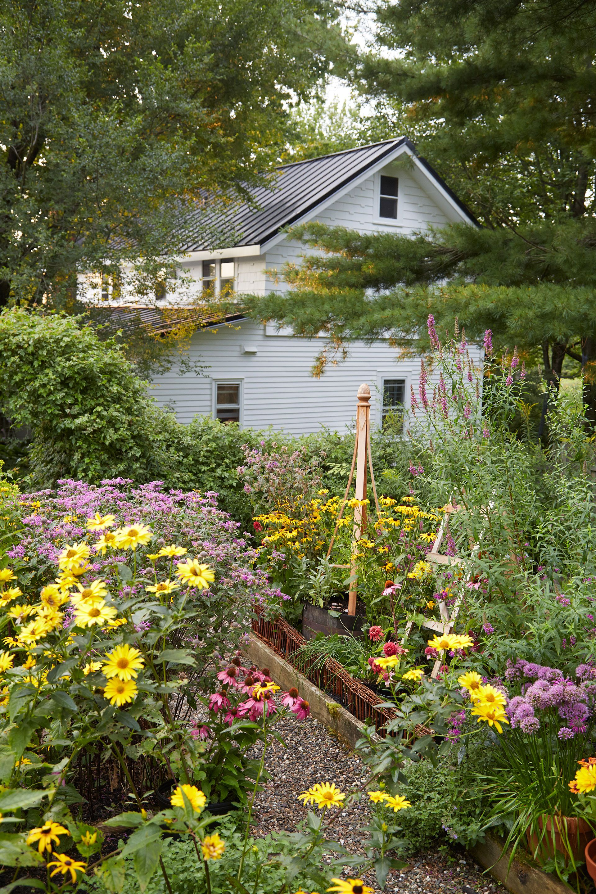 The cutting garden overflows with echinacea, coneflowers, and false sunflowers—all of which do just fine with a once-a-week watering.   - CountryLiving.com