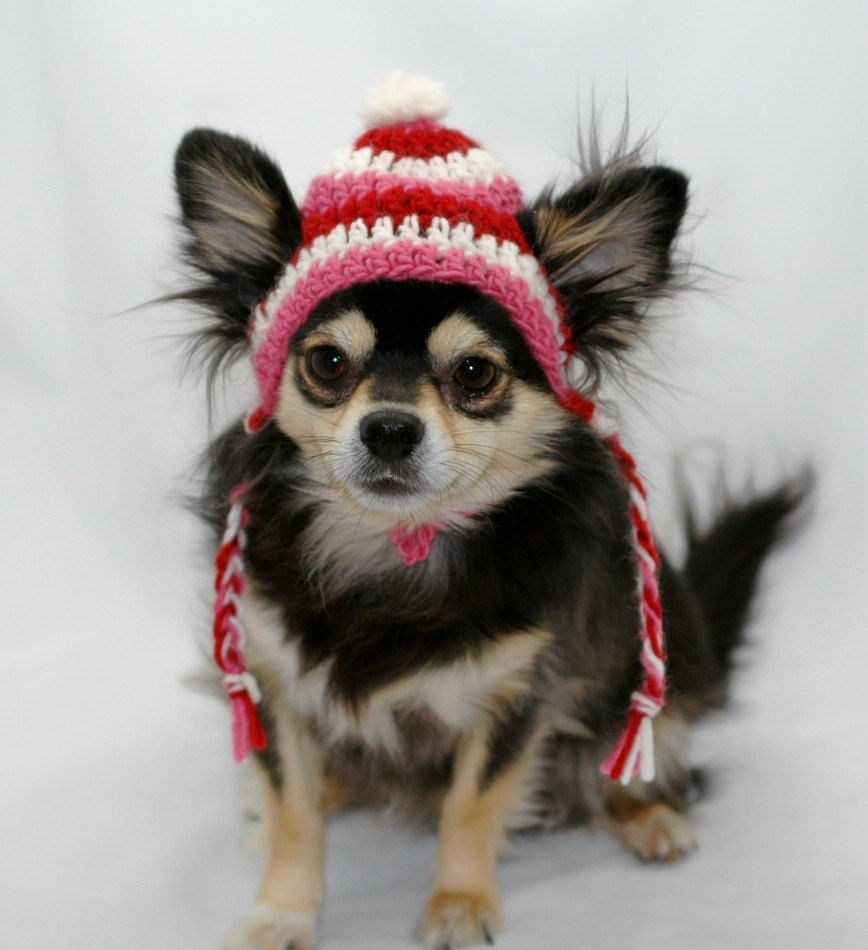 Dog hat crocheted with ear flap braids Pink Red by ShaggyChic ...