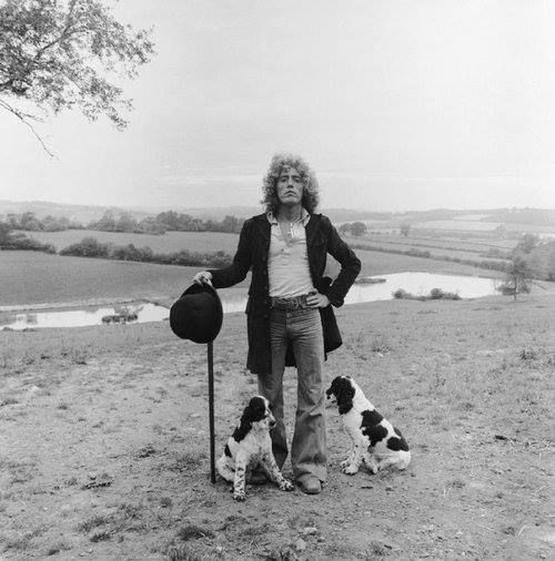 Roger Daltrey & his Dogs